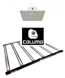 Caluma LED