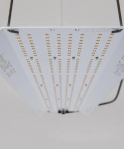 hortiONE 592 V2 LED Panel 190 Watt
