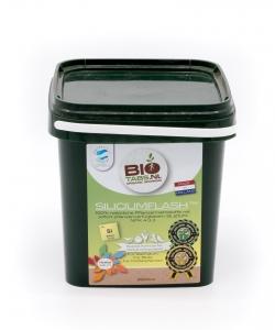 BioTabs Silicium Flash 2,5l