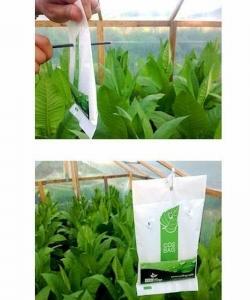 CO2 Bag - Kohlendioxid-Tüte